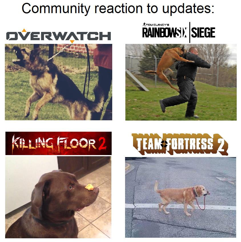 gamer dog meme by menaria on deviantart