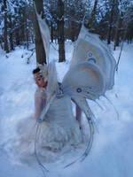 wings 41 by AvantFae