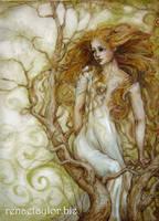 Wren by AvantFae