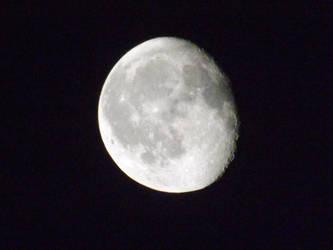 mooned lit