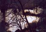 Winter im  Moor