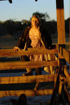 Arielle's Sunset Barn
