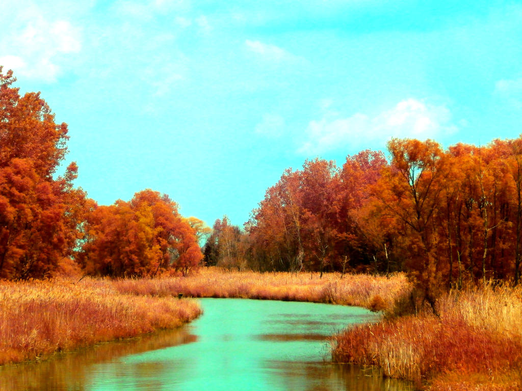 Golden Marshland by systemcat