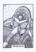 AA13 Sketch - Tarantulas by Kingoji