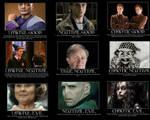 Harry Potter Alignment Chart