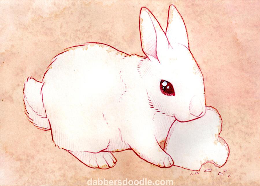 White Bunny Rabbit by DablurArt on DeviantArt