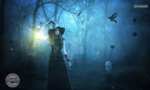 hallowen forest night