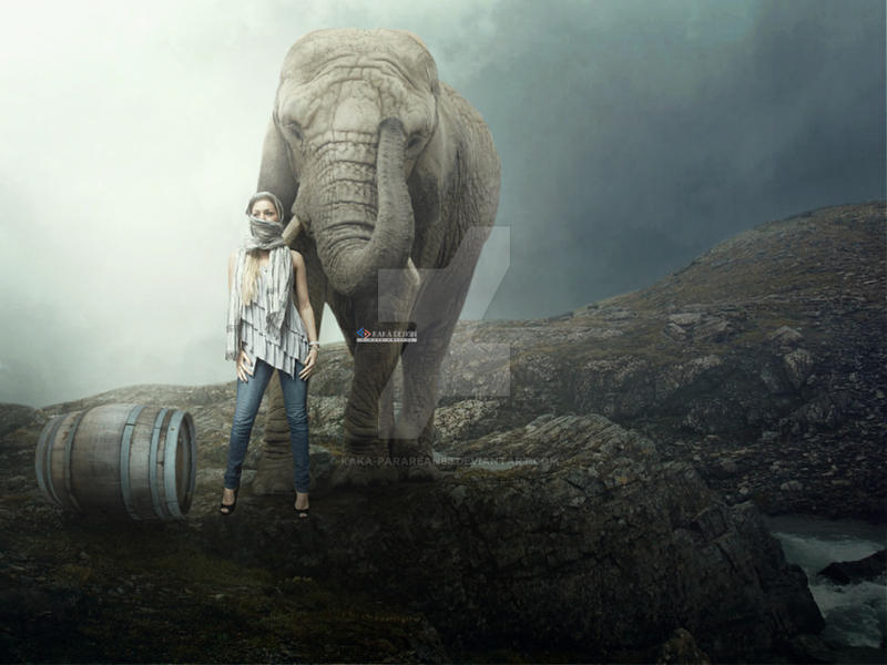 The eElephant