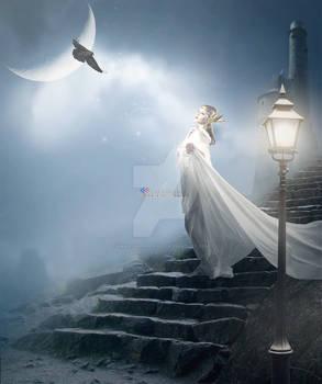 Under on the moonlight