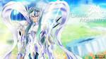 Camus - Aquarius God Cloth