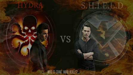 Shield VS Hydra