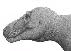 Late 100+ Watchers Tyrannosaurus Rex by Megasupream