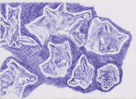 Ballpoint pen foxes by ArcticIceWolf