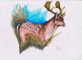 Fallow deer with markers by ArcticIceWolf