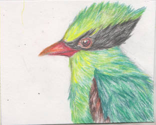 Green Magpie Postcard by ArcticIceWolf