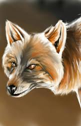 Crossfox portrait by ArcticIceWolf
