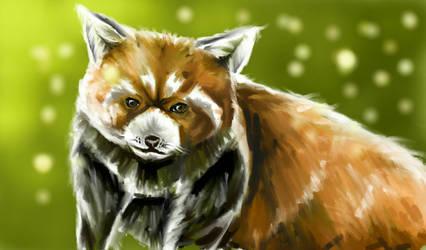 Forest Fluff by ArcticIceWolf