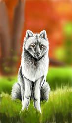 Autumnal wolf by ArcticIceWolf