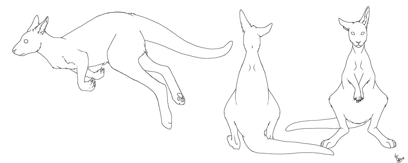 Line Drawing Kangaroo : Kangaroo lines by emmettyphoon on deviantart