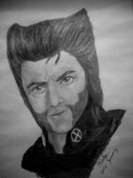 Wolverine-HJ