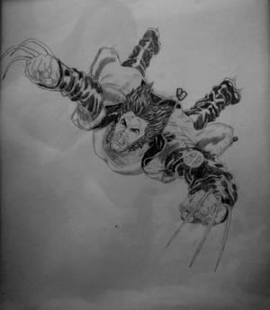 Wolverine-1.5