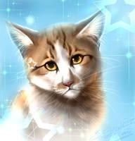 Kitty by Jei-Dinofelini