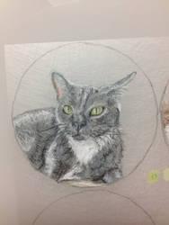 Tiny Portrait series 3