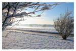 Frozen Kiel XI