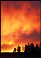Light the sky on fire ... by UrbanZombie