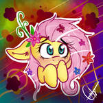 =Flutter shy shy=