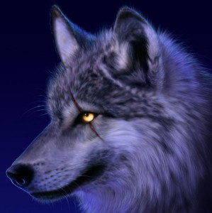 CanisL7's Profile Picture