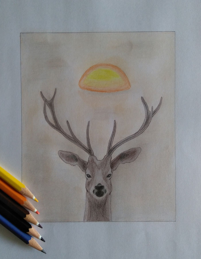 Deer by Darvel
