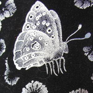 SilkButterflies's Profile Picture