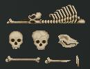 Bones by KaavenKavos