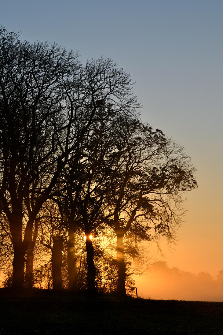 Morning has Broken by AnnaMariaHolm