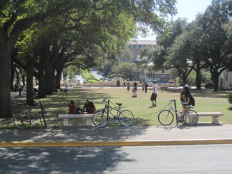 UT Park by JJflores69
