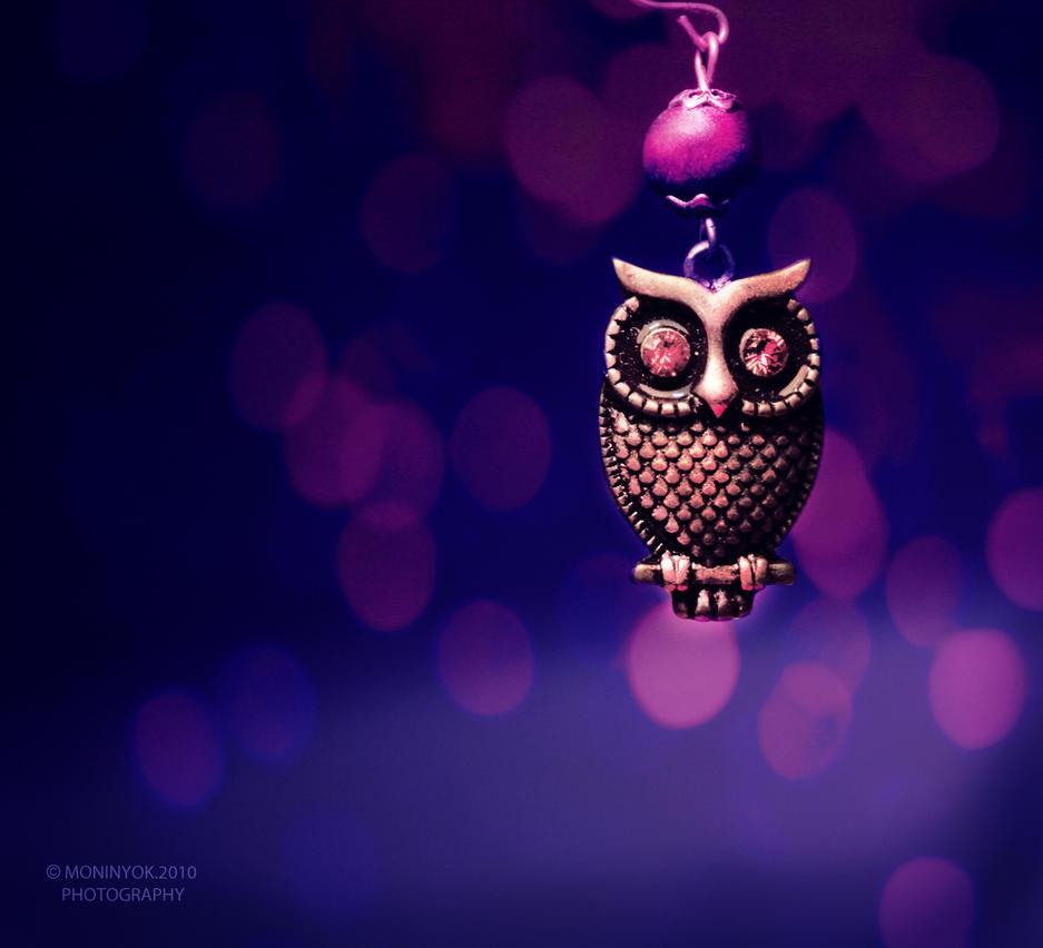 night-bird by moninyok