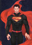 Superman from Otherverse:Redux