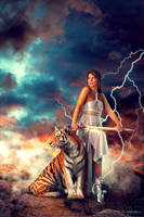 Tiger Princess by JaiMcFerran