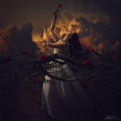 The Truth Beneath the Rose by JaiMcFerran
