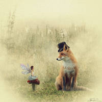 The Faerie and The Fox by JaiMcFerran