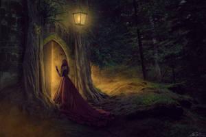 The Veil of Dreams by JaiMcFerran