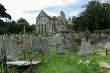 STOCK: Graveyard Ruins