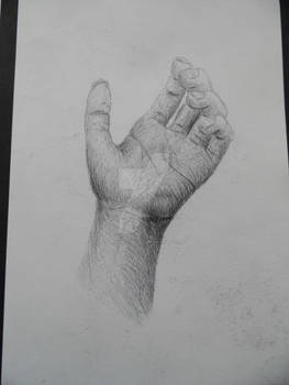 Hand - Biro observational drawing