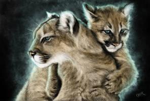 Puma by Omar-Atef
