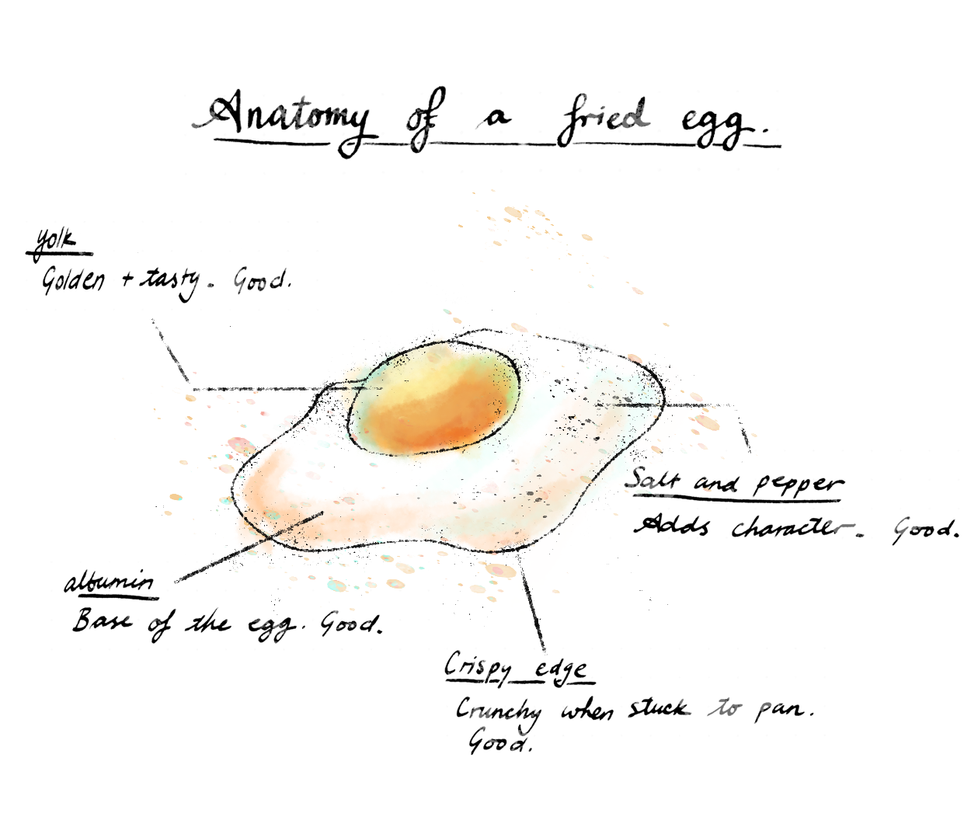 Anatomy of a fried egg by flying-bagel on DeviantArt