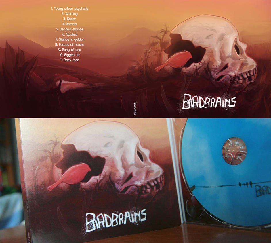 Birdbrains album cover by tousti