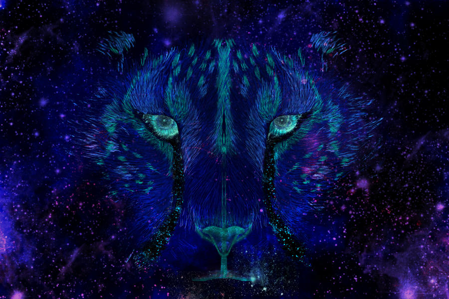 Aurora Eyes by Midnight-Sun-Art