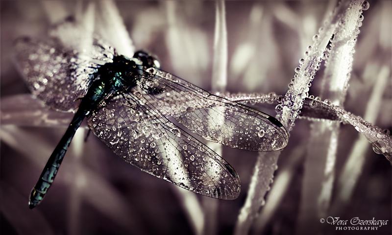 Melancholy by MilenaKalias