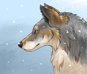 Northwestern Wolf by TheKohakuDragon